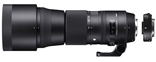 Review of the Sigma 150-600mm Contemporary Lens Plus TC-1401 Teleconverter Bundle