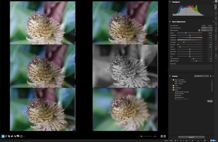 You can view up to six images at once and apply edits to individual photos while in multi-image view.