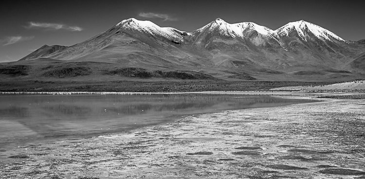 Bolivia-Altiplano-Feb2008-554