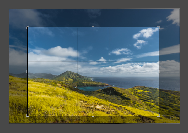 How to Use Lightroom to Learn Composition in Photography