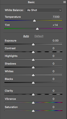 Image: Close up of the basic RAW editor sliders