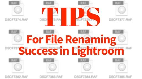 Tips for File Renaming Success in Lightroom