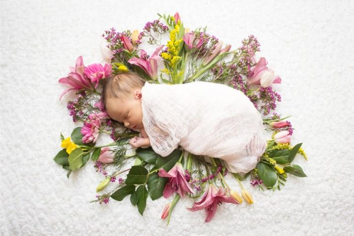 styled portraits newborns