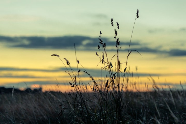 Inspire Your Creativity sunset