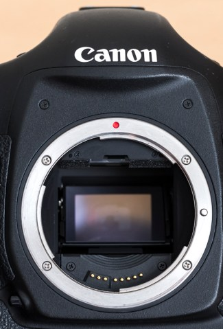 Here is a view of one of my camera bodies without its body cap. Care should be taken when cleaning around the lens mount so as to avoid dust/dirt etc from falling in. It's good practice to do this with the lens mount facing down.