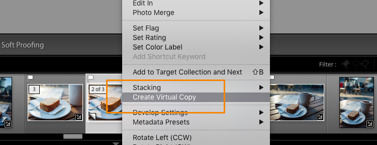 Lightroom Export 10 Virtual Copy