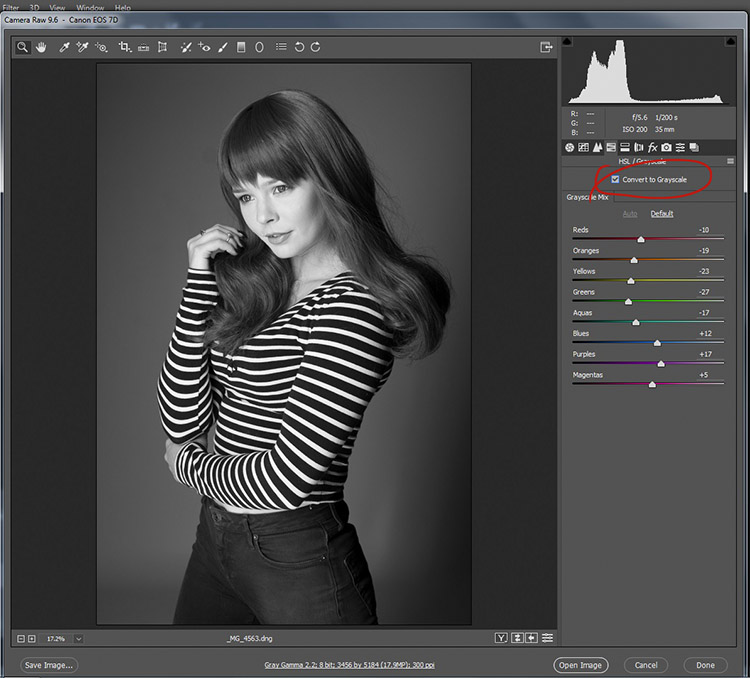 black-and-white-conversions-in-photoshop-ACR-mono