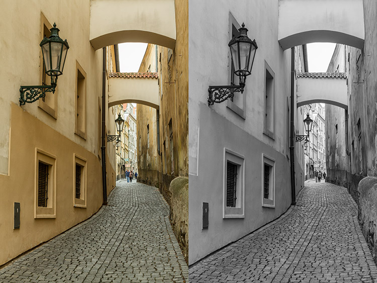 black-and-white-conversions-in-photoshop-greyscale-example