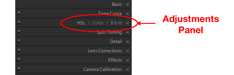 lightroom-adjustments-panel