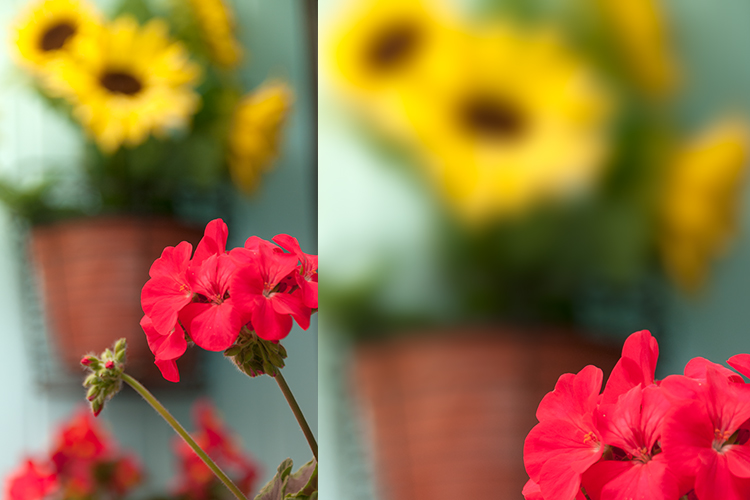 Tips for Using the Blur Filters in Photoshop