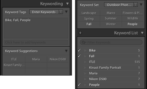 lightroom-library-module-keywords