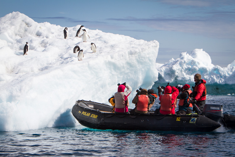 A zodiac pull right up to an iceberg with Adelie Penguins.