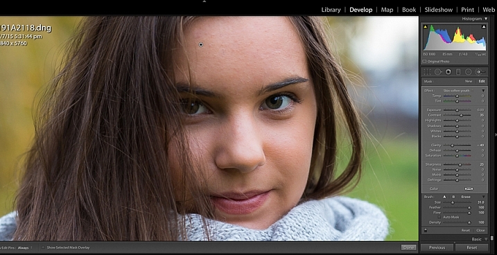 Image showing import create custom Lightroom brush presets
