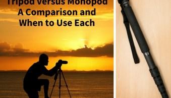 Tripod versus Monopod – a Comparison and When to Use Each