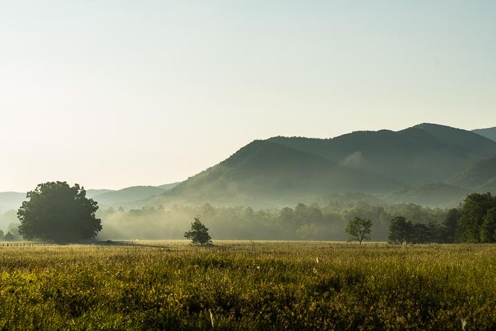 morning_landscape_preset