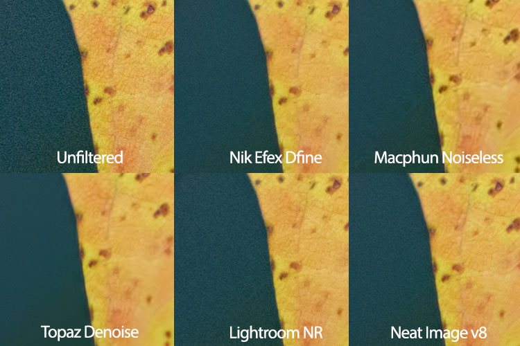 leaf-neat-image-comparison
