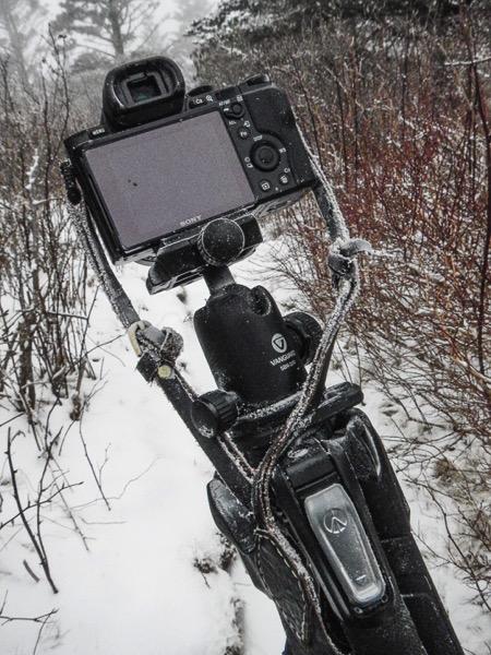 Winter Frozen Camera 1