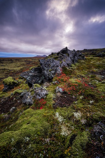 DPS ultimate landscape photography guide 25