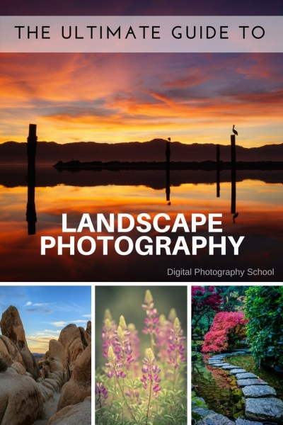 Image: Grab the dPS Ultimate Guide to Landscape Photography free PDF here.
