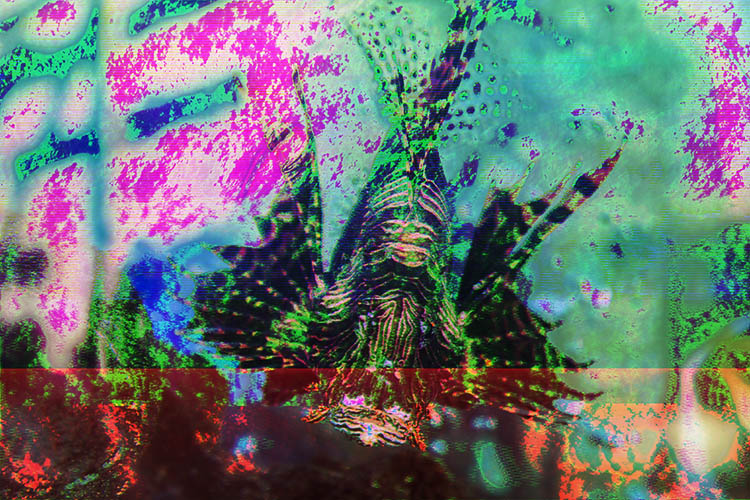 How to Make Abstract Glitch Art Photographs