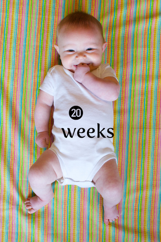 How to Use Photoshop to Create Milestone Photos of Babies adding the text