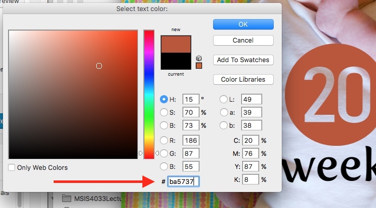 How to Use Photoshop to Create Milestone Photos of Babies text color