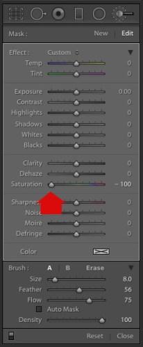 使用Lightroom和Silver Efex Pro 2制作可选彩色人像的3种方法 - 将饱和度设置为零