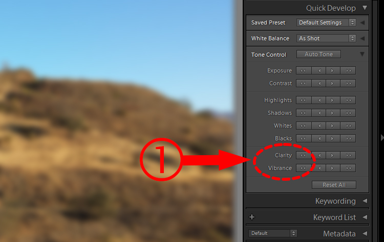 Lightroom Secret2 quick develop1