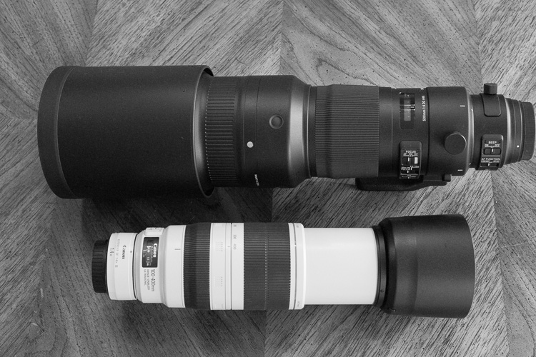 Sigma 500mm F4 Sport Lens Review 10