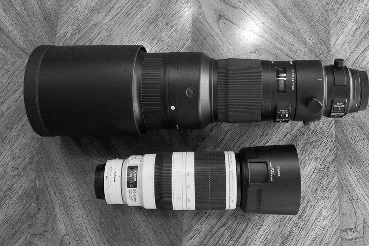 Sigma 500mm F4 Sport Lens Review 9