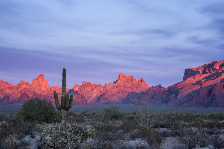 Kofa National Wildlife Refuge, Arizona by Anne McKinnell - 5 Common Post-Processing Mistakes to Avoid