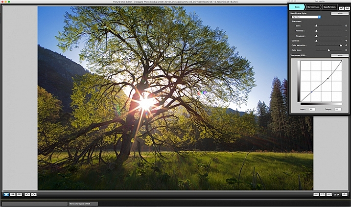 Customizing Your Images With In-Camera Picture Styles