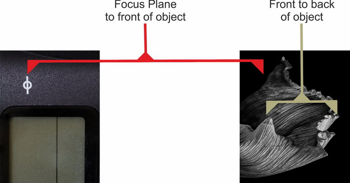 How to Photograph the Images Needed For Focus Stacking