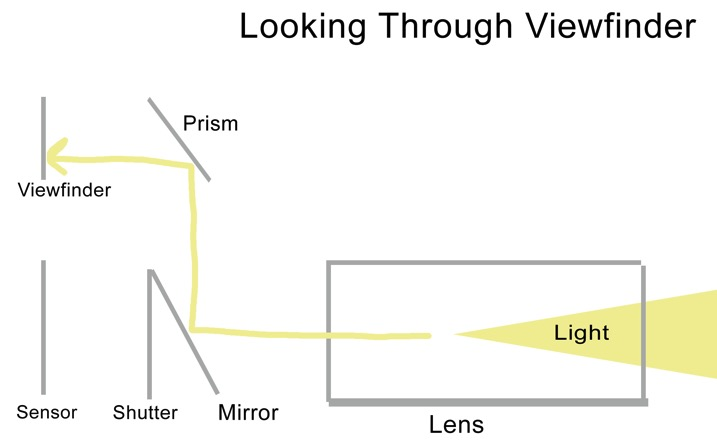 Looking viewfinder - The dPS Absolute Beginner's Guide to Photography