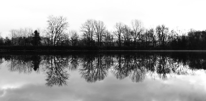 Mega article symmetry - The dPS Absolute Beginner's Guide to Photography
