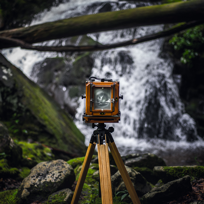 Digital Photography - Is it the Death of Prints?