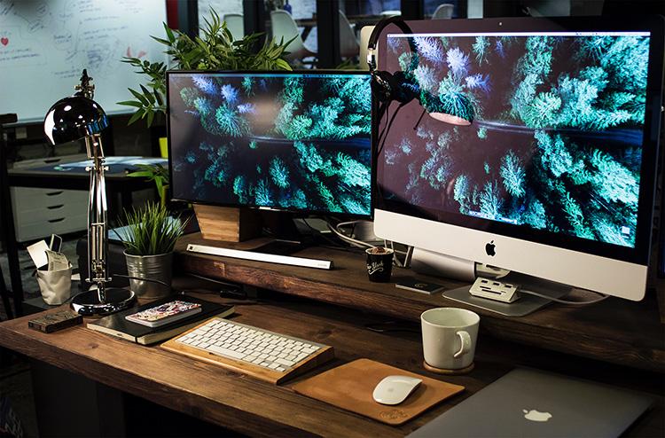 Twin monitors