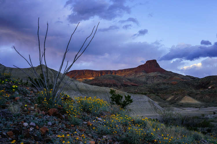 Big Bend Ranch State Park, Texas, by Anne McKinnell - habits better photographer