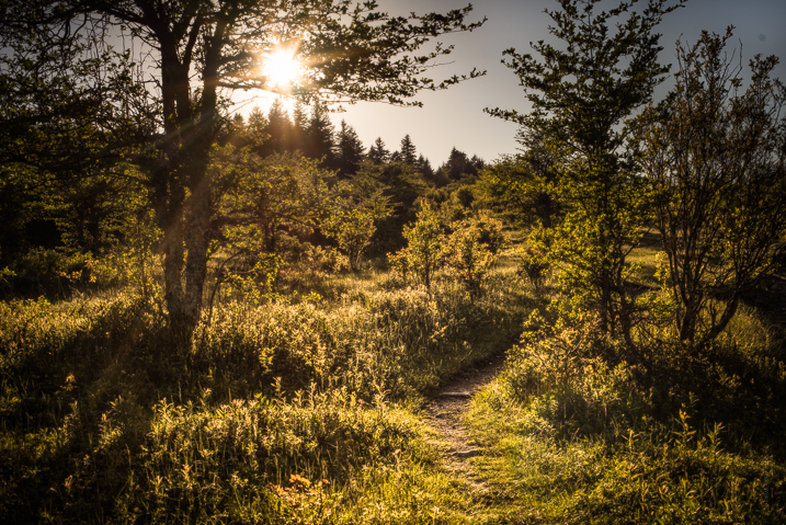 4个关键要素可帮助您创建更强大的风景摄影