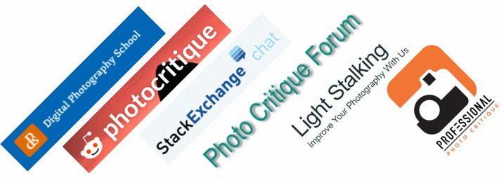 Five Steps to Benefiting From Social Media Networks for Your Photography