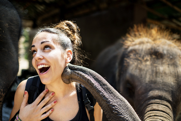 Three Good Reasons To Learn More About Photography - girl with elephant