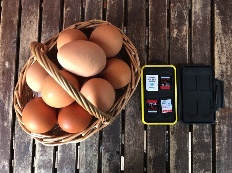 Traveling Light - How to Backup and Manage Your Photo on the Go Without a Computer - eggs in a basket