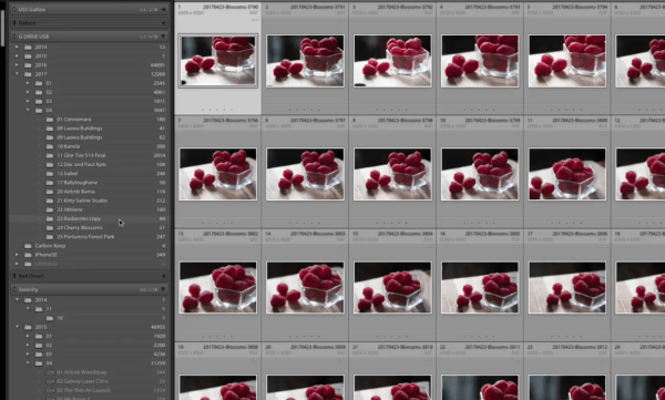 How to Use the Folders Panel in Lightroom