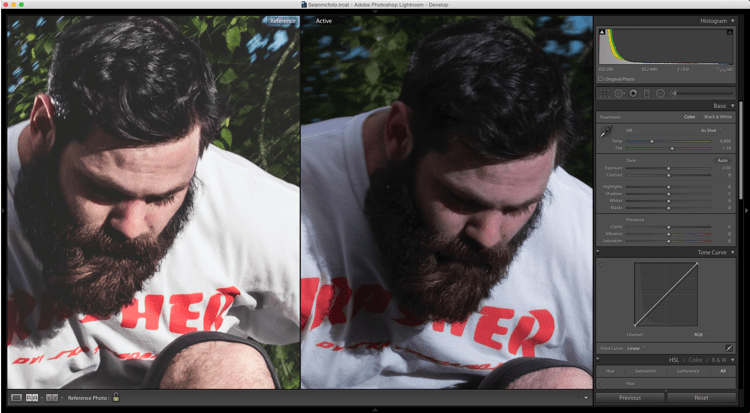 reference view side by side - How to Match Your Image Processing Using Reference View in Lightroom