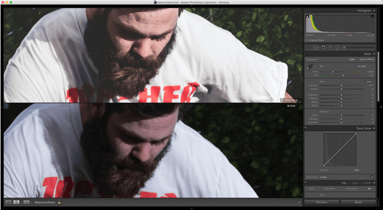 reference view top and bottom - How to Match Your Image Processing Using Reference View in Lightroom