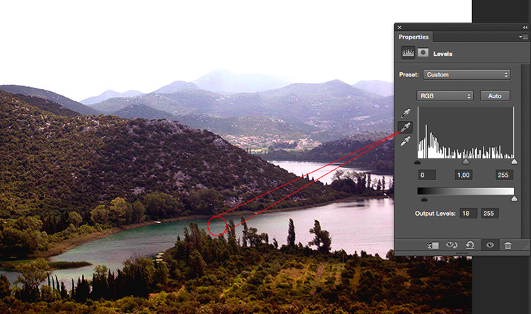 How to Take Control of Contrast Using Curves and Levels in Photoshop