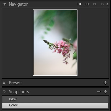 Lightroom Snapshots