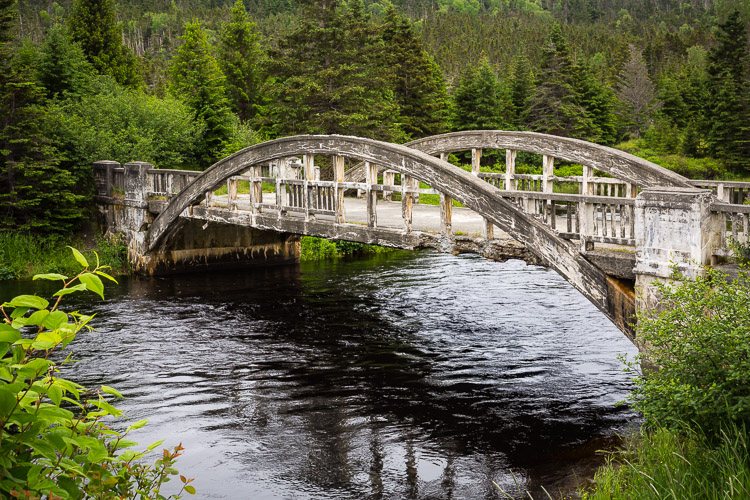 Troubleshooting 4 Tricky Photography Situations - What Would You Do? - in Newfoundland