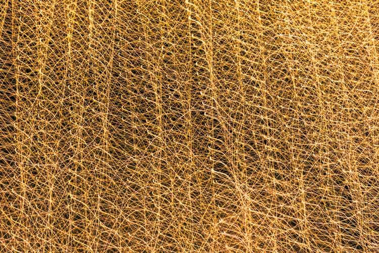 图像:当故意移动相机时,一排串的树挂上了一棵非常不同的图像。