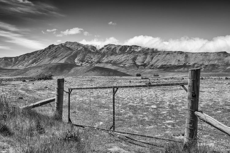 Tips for learning how to see in monochrome